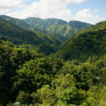Blue Mountain, Jamajka